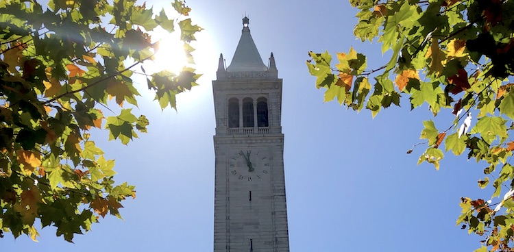 Top of the Campanile framed by tree branches.